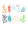 set with original bright gradient abstract plants vector image
