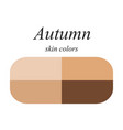 skin colors for autumn type vector image vector image