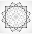 wireframe polygonal element geometric vector image vector image