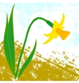 card with one daffodil vector image vector image