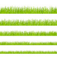 green grass landscaped lawns meadows border vector image vector image