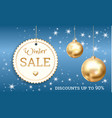 special offer winter sale concept banner vector image vector image