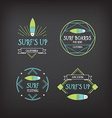 Surf vintage elements Retro logo board Hawaii vector image vector image