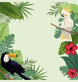 tropical bird hibiscus exotic palm vector image vector image