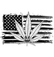 draw in black and white usa vector image