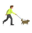 boy walking dog colorful full length vector image