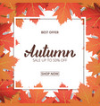 autumn sale banner with maple leaves frame and vector image