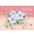 Card White Poinsettia and Berry vector image vector image