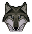cartoon mascot image grey wolf head vector image vector image
