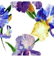 Seamless pattern with color irises1-03 vector image vector image