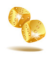two golden falling dice isolated on white vector image vector image