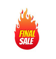 final sale label isolated transparent background vector image vector image