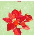 Seamless pattern with poinsettia plant-05 vector image