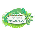 welcome to madagascar banner vector image vector image