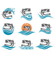 catfish set vector image vector image