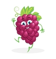 Cute grapes on a white background character vector image vector image