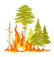 forest fire poster vector image vector image