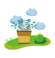 houseplant in the camp scene vector image vector image