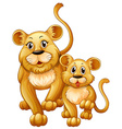 Mother lion and little cub vector image vector image