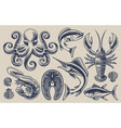 set on sea food theme vector image