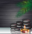 spa with stones and candle vector image vector image