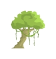 Tropical Tree With Liana Hanging Jungle Landscape vector image vector image