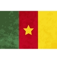 True proportions Cameroon flag with texture vector image vector image