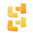 Set of Pieces Cheddar Swiss Cheese on Background vector image