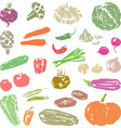 a set of sketches of various ripe vegetables vector image