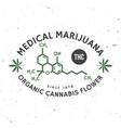 medical cannabis badge with cannabis leaf vector image