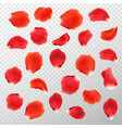 red rose petals set isolated on white vector image