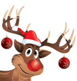 Rudolph the reindeer red nose with Christmas Balls vector image vector image