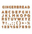 set gingerbread dark brown cookies tasty vector image vector image