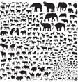silhouettes wildlife asia vector image