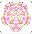 symmetry colorful pattern vector image vector image