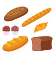 bakery products baguette and rye bread with cakes vector image