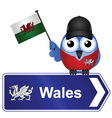COUNTRY SIGN WALES vector image vector image