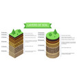 education isometric diagram and detailed vector image