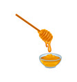 glass bowl of sweet honey and wooden dipper vector image vector image