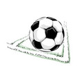 soccer ball field vector image