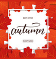 autumn banner with oak leaves frame and trendy vector image