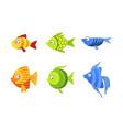 cute fish set colorful tropical sea or aquarium vector image vector image