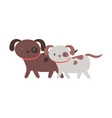 cute little dogs walking cartoon pets isolated vector image vector image