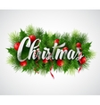 Inscription Christmas with fir branches and holly vector image
