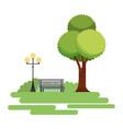 natural park tree lamp and bench vector image