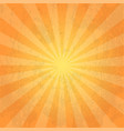 orange color burst background or sun rays vector image vector image