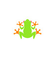 red eyed tree frog vector image vector image