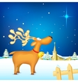 Reindeer in Christmas night vector image