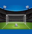 soccer football stadium vector image