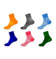 socks in on white background vector image vector image